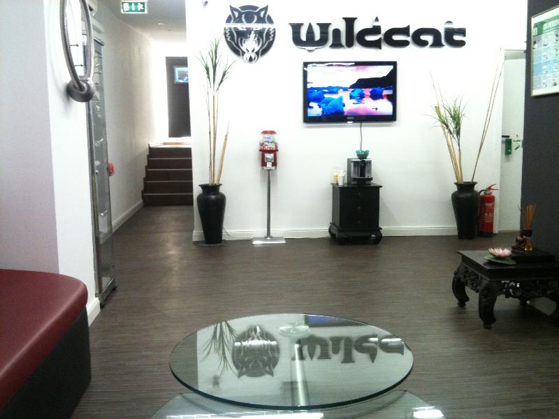 wildcat piercing essen